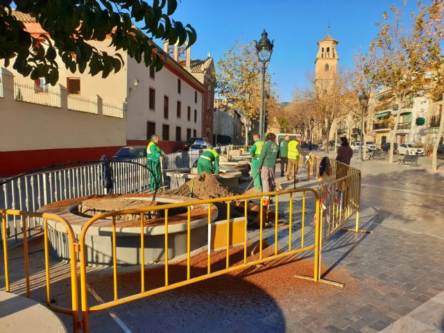 El Ayuntamiento sustituye los siete árboles que llevaban varios años talados en La Corredera por nuevas especies - 2, Foto 2
