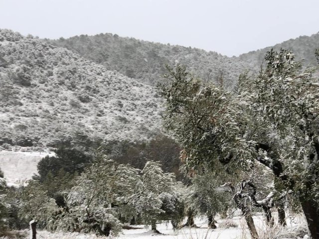 [There is already snow in Sierra Espuña
