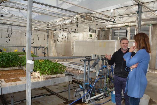 La alcaldesa asegura que la agricultura aguileña está a la vanguardia del control biológico de plagas - 1, Foto 1