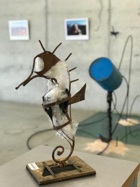 Mar & Plásticos. Artistas por el Mar Menor - 1, Foto 1
