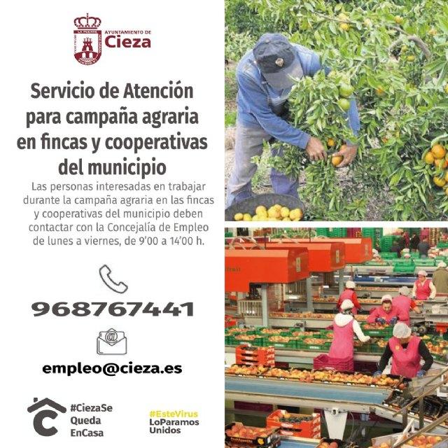 Elaboran una bolsa de trabajo para salvar la campaña de fruta - 1, Foto 1