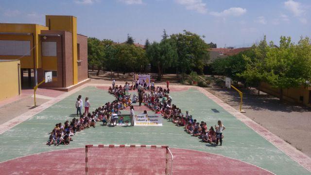 El colegio Deitania recibe la visita del canal de TV 7RM y publica los beneficios de su reciente proyecto realizado (734 €), Foto 3