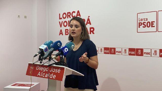 El PSOE exige al Gobierno Regional que cumpla su palabra e instale las zonas de sombra prometidas en colegios públicos de Lorca - 1, Foto 1
