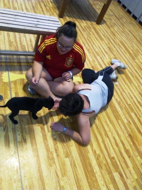 Terapia asistida con animales de compañía, Foto 3