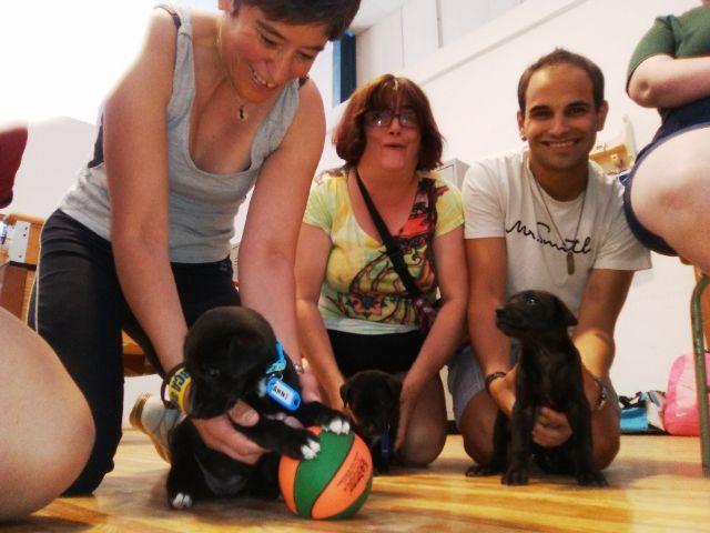 Terapia asistida con animales de compañía, Foto 7
