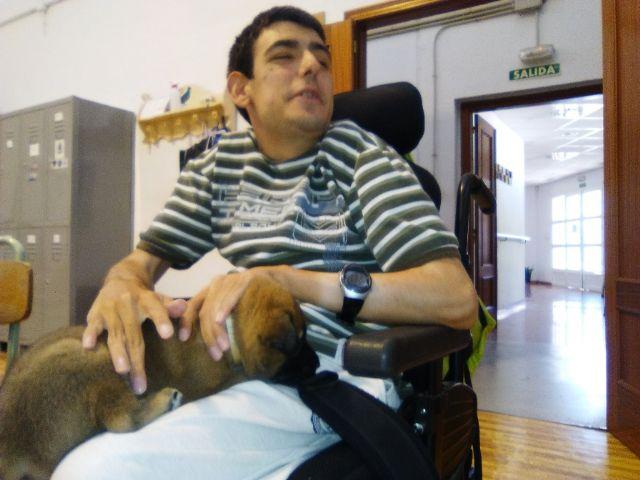 Terapia asistida con animales de compañía, Foto 8