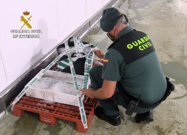 La Guardia Civil interviene en Mazarrón más de 35 kilos de pulpo capturado ilícitamente, Foto 2