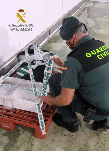 La Guardia Civil interviene en Mazarrón más de 35 kilos de pulpo capturado ilícitamente, Foto 4