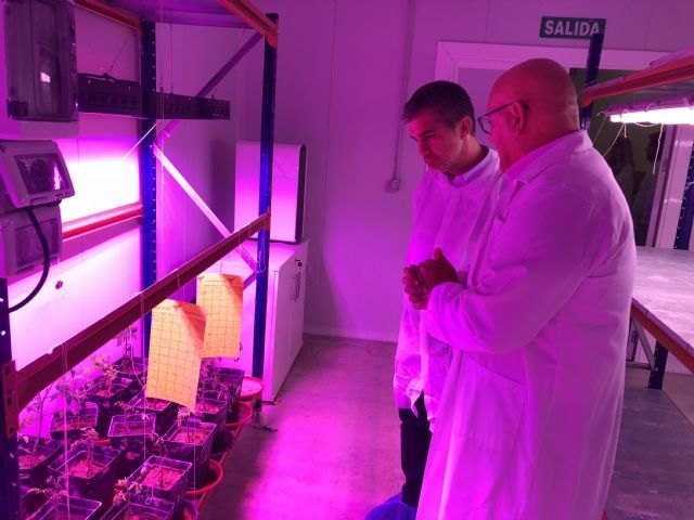 Los fertilizantes ecológicos extienden su uso en la Región y apuestan por el ´residuo cero´ - 1, Foto 1