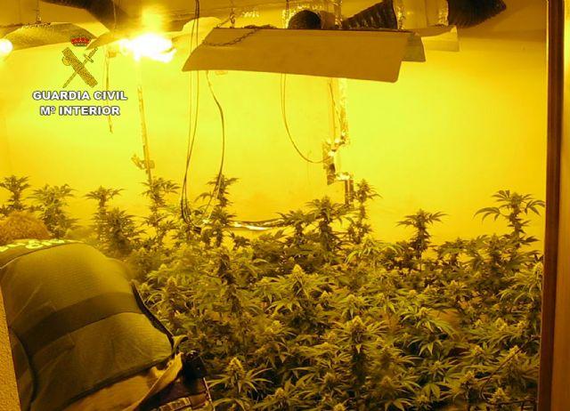 La Guardia Civil desmantela en Librilla un grupo criminal dedicado al cultivo ilícito de marihuana - 2, Foto 2