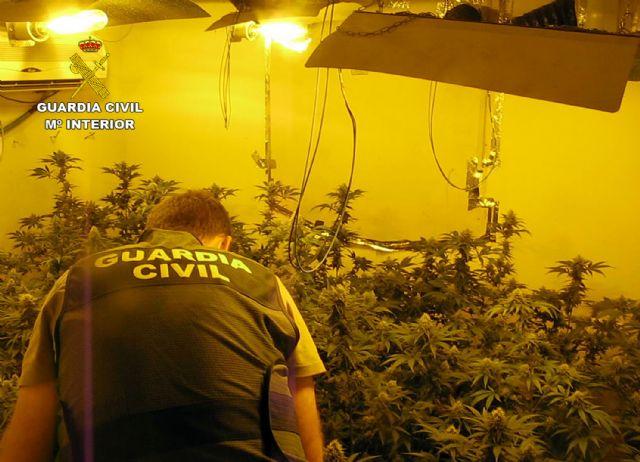 La Guardia Civil desmantela en Librilla un grupo criminal dedicado al cultivo ilícito de marihuana - 3, Foto 3