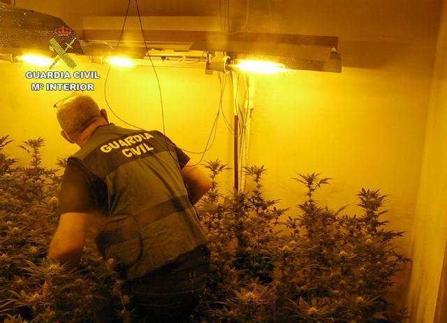 La Guardia Civil desmantela en Librilla un grupo criminal dedicado al cultivo ilícito de marihuana - 4, Foto 4