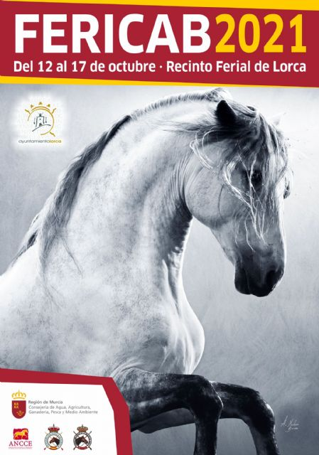 Más de un centenar de equinos de pura raza española participarán en la nueva edición de FERICAB que comenzará el próximo martes, 12 de octubre - 1, Foto 1