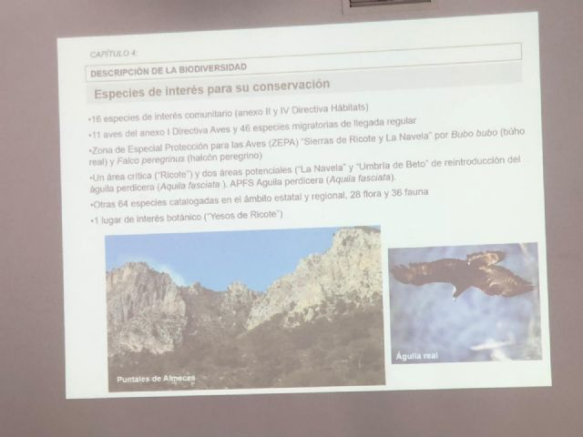The first deputy mayor attends the Environmental Advisory Council in which the declaration of the Gredas de Bolnuevo is approved as a Natural Monument, Foto 5