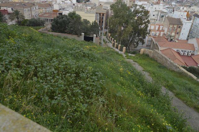 CTSSP-Podemos exigirá una actuación integral en el Parque Torres y todo su entorno - 4, Foto 4