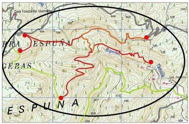 Cierran el acceso a las zonas de nidificación del águila real en Sierra Espuña entre los meses de enero y junio de 2020