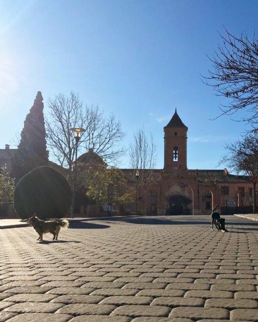 Un totanero realiza hoy 8 de enero la romer�a de subida a La Santa, porque es cuando toca, Foto 4