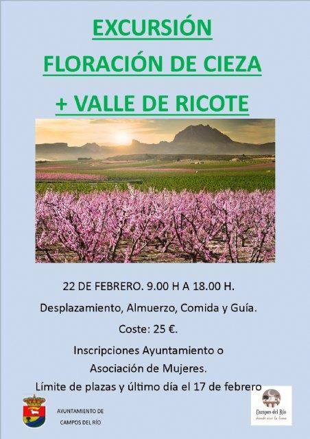 Igualdad organiza una excursión a la floración de Cieza y el Valle de Ricote - 1, Foto 1