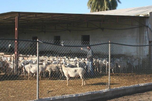Acuerdan la nueva puesta en marcha del Consejo Asesor Agrario y Ganadero de Totana, Foto 1
