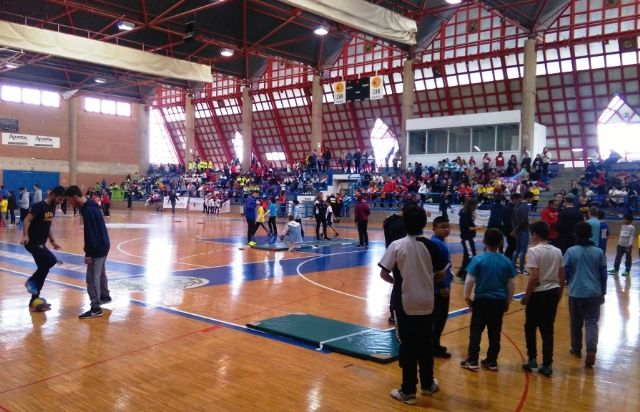 "The ""Tierno Galván"" School of Totana participated in the Regional Final of Playing School Sports Athletics - 9"