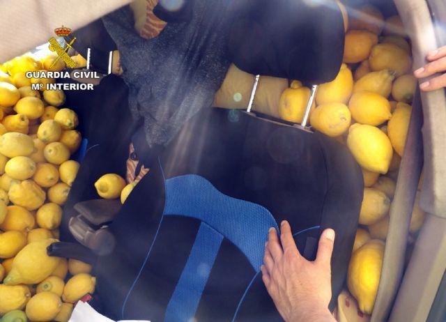La Guardia Civil desmantela un grupo delictivo dedicado a la sustracción de limones en el Valle del Guadalentín, Foto 1