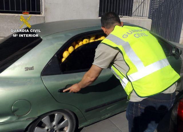 La Guardia Civil desmantela un grupo delictivo dedicado a la sustracción de limones en el Valle del Guadalentín, Foto 7