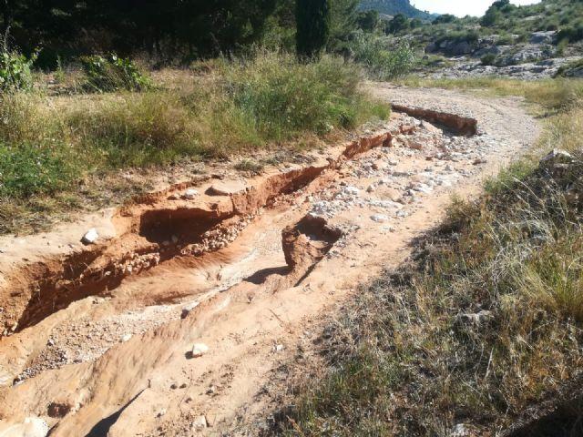 Las lluvias del pasado sábado dañaron más de un centenar de kilómetros de caminos rurales del término municipal - 4, Foto 4