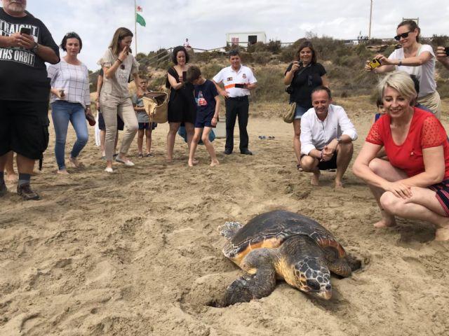 Liberada una tortuga boba que fue hallada hace dos semanas enredada en plástico y basura marina en Mazarrón, Foto 1