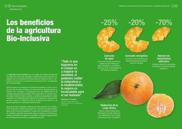 9 de septiembre, Día Mundial de la Agricultura: España, pionera en agricultura sostenible y comprometida - 4, Foto 4
