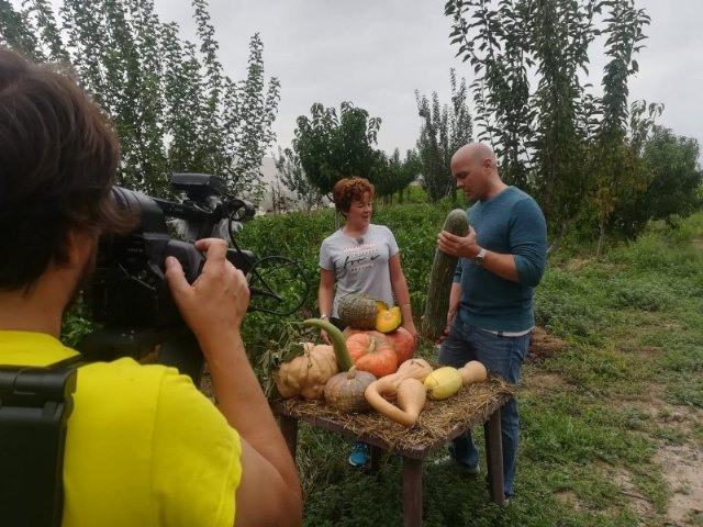 "On October 9, 11, 20 and 22, reports on Totana will be broadcast on the television program ""Here the Earth"", on Spanish Television"
