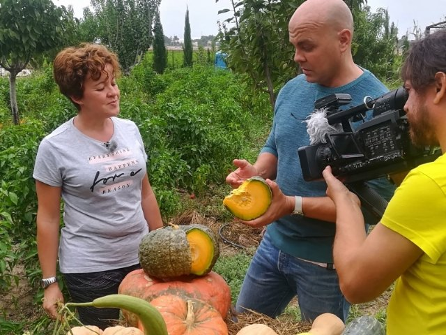 """On October 9, 11, 20 and 22, reports on Totana will be broadcast on the television program """"Here the Earth"""", on Spanish Television - 2"""