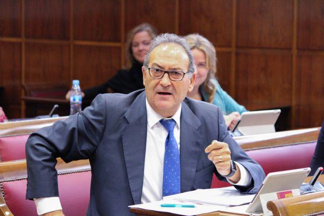 El Senado pide impulsar la candidatura de la Fiesta de los Caballos del Vino como Patrimonio Cultural Inmaterial de la Humanidad - 1, Foto 1