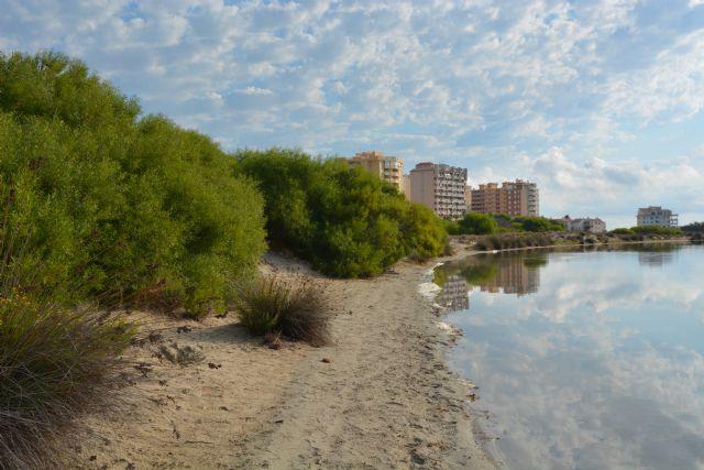 El Ministerio de Medio Ambiente autoriza a ANSE a restaurar una parte de la Caleta del Estacio - 1, Foto 1
