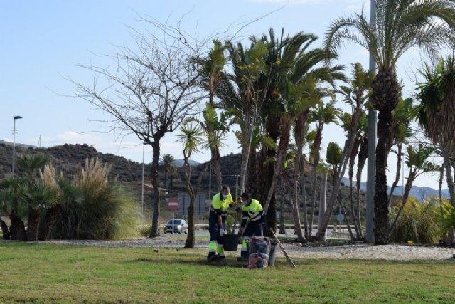 Mazarrón celebra el Día Internacional de la Mujer con la lectura del manifiesto por el 8-M y la plantación de una jacaranda - 4, Foto 4