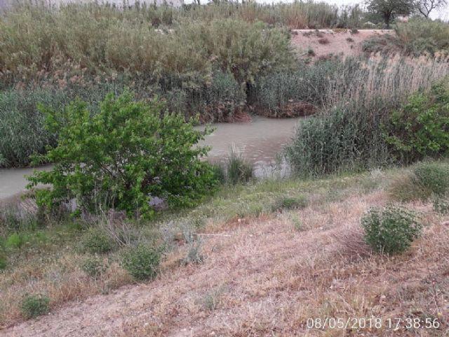 La Confederación Hidrográfica del Segura investiga dos vertidos al río Segura en Alcantarilla y Las Torres de Cotillas - 3, Foto 3