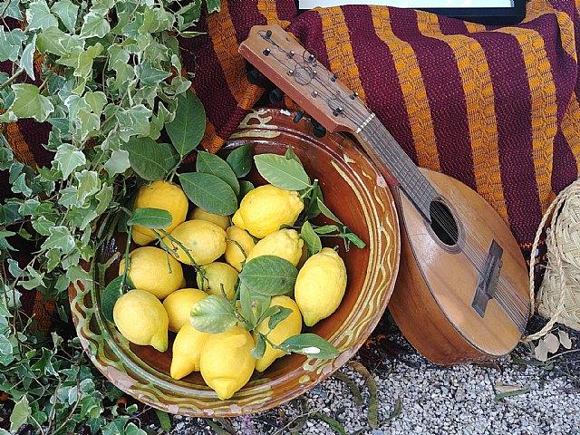"La Peña ""La Mantellina"" organizes the Festival of Folklore and Traditions ""Totana, Kingdom of Murcia"" - 5"