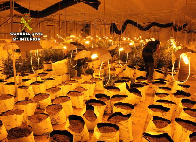 La Guardia Civil desmantela una plantación de marihuana en una nave industrial de Albudeite - 1, Foto 1