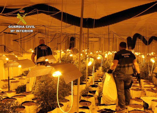 La Guardia Civil desmantela una plantación de marihuana en una nave industrial de Albudeite - 2, Foto 2