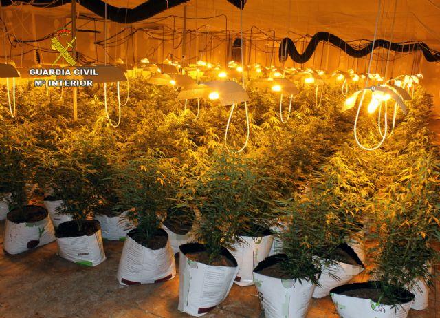 La Guardia Civil desmantela una plantación de marihuana en una nave industrial de Albudeite - 4, Foto 4
