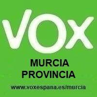 Encuentro de VOX con afiliados y simpatizantes en el Puerto de Mazarrón, Foto 1