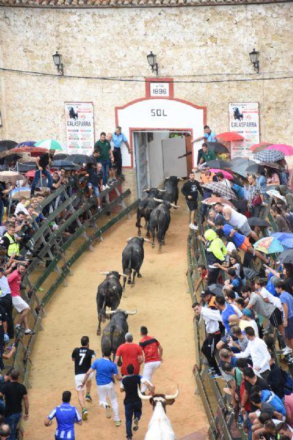 Sexto y último encierro de la Feria Taurina del Arroz de Calasparra - 4, Foto 4