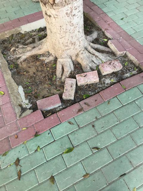 Cambiemos Murcia acusa a Cs y PP de presentar la iniciativa sobre libros de texto en un centro educativo que tienen abandonado - 1, Foto 1