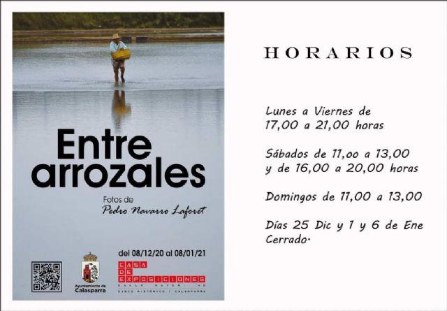 Inauguración de la exposición de fotografía ENTRE ARROZALES de Pedro Navarro Laforet - 1, Foto 1