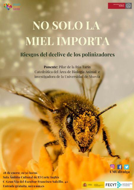 'No solo la miel importa: riesgos del declive de los polinizadores' - 1, Foto 1