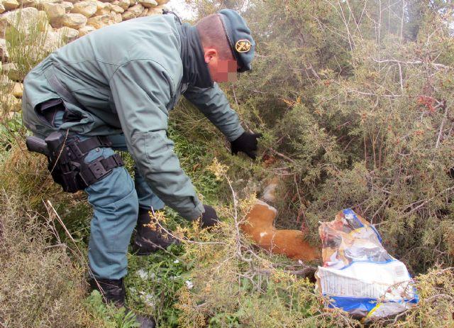 La Guardia Civil investiga a dos personas por el sacrificio violento de dos perros de caza - 2, Foto 2