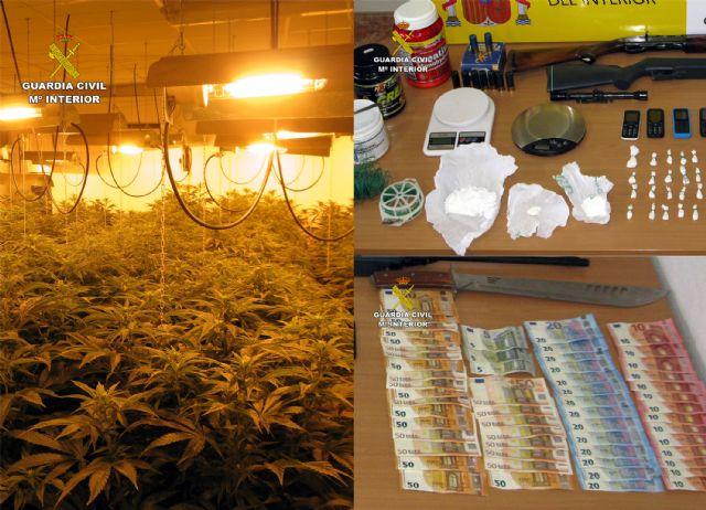 Detenido en Totana por tráfico y cultivo de drogas, tenencia ilícita de armas, robo y defraudación de fluido eléctrico, Foto 5