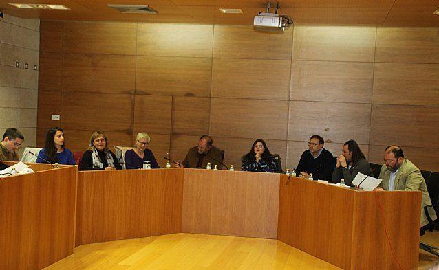El último pleno ordinario de esta legislatura 2015/2019, correspondiente a este mes, se celebrará el 30 de abril - 2, Foto 2