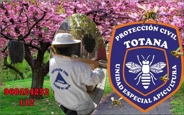 The Civil Protection Beekeeping Unit activates the bee swarm collection device, coinciding with spring flowering