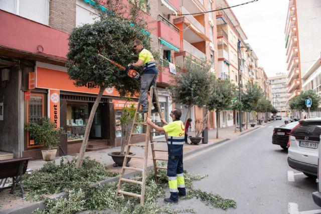 El nuevo contrato de jardinería ampliará el número de actuaciones de este servicio municipal, Foto 1