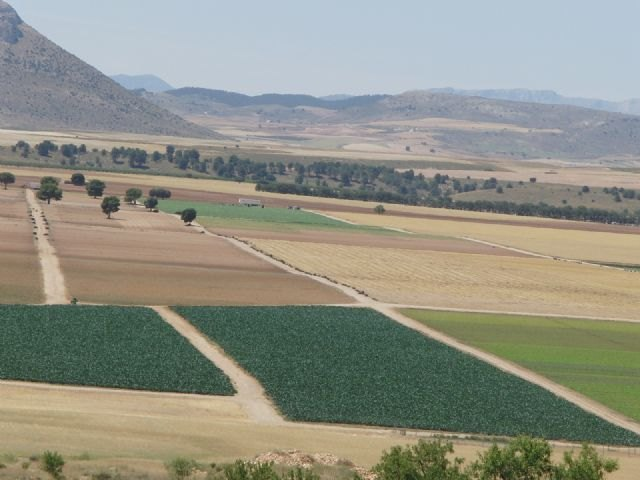 Presentación del Consejo para la Defensa del Noroeste de la Región de Murcia en Bullas - 4, Foto 4